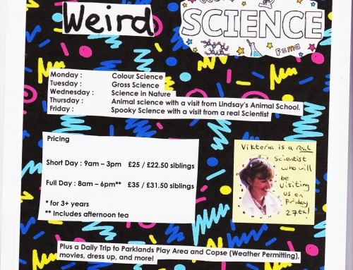 October Half Term Holiday Club : Weird Science!