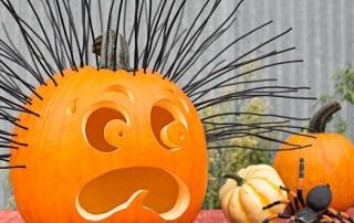 Pumpkin Crazy October Half Term Holiday Club 2019